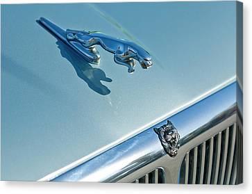 1995 Jaguar Xj6 Sedan Hood Ornament Canvas Print