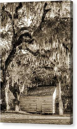 Live Oaks Canvas Print - 19th Century Slave House by Dustin K Ryan