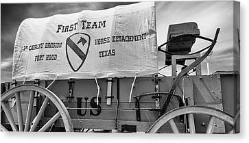 1st Cavalry Division Horse Detachment Canvas Print by Stephen Stookey