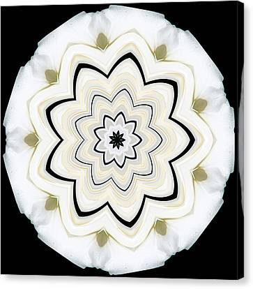 Canvas Print featuring the photograph 9 Petaled Designs by Baha'i Writings As Art
