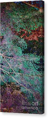 A Forest Of Magic Canvas Print by Eena Bo