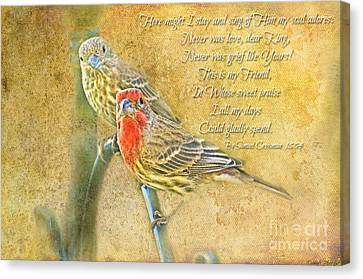 A Pair Of Housefinches With Verse Part 2 - Digital Paint Canvas Print by Debbie Portwood