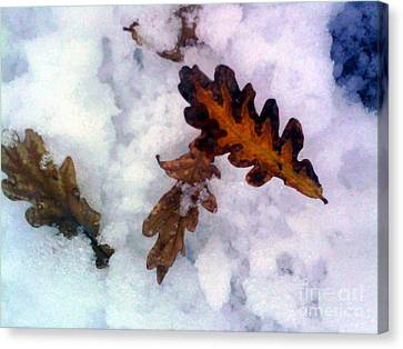 Abstract Landscape,winter Theme Canvas Print
