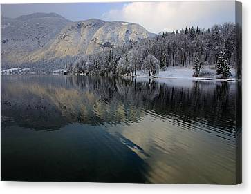Alpine Winter Reflections Canvas Print by Ian Middleton