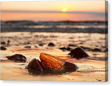 Amber Stone On The Beach Canvas Print