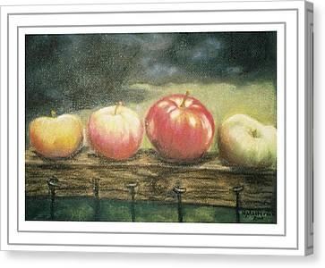 Apples On A Rail Canvas Print by Harriett Masterson