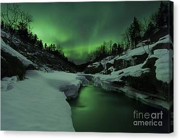Aurora Borealis Over Tennevik River Canvas Print by Arild Heitmann