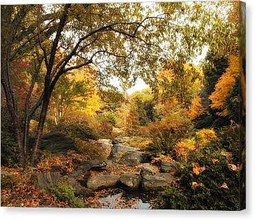 Autumn Garden Canvas Print by Jessica Jenney