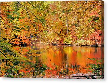 Autumn Reflections Canvas Print by Kristin Elmquist