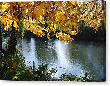 Canvas Print featuring the photograph Autumn by Sergey and Svetlana Nassyrov