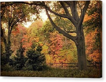 Autumn Woodland Canvas Print by Jessica Jenney