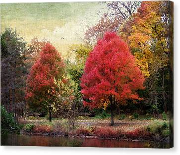 Maple Season Canvas Print - Autumn's Canvas by Jessica Jenney