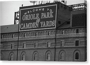 Oriole Canvas Print - Baltimore Orioles Park At Camden Yards Bw by Frank Romeo