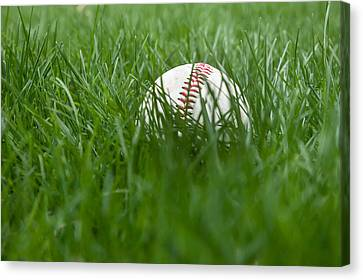 Baseball In Grass Canvas Print by Erin Cadigan