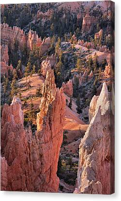 Canvas Print featuring the photograph Bryce Canyon Sunrise by Stephen  Vecchiotti