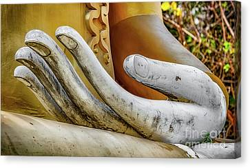 Canvas Print featuring the photograph Buddha's Hand by Adrian Evans