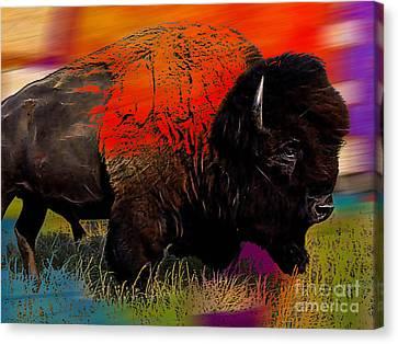 Buffalo Collection Canvas Print