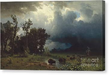 Buffalo Trail  The Impending Storm Canvas Print by Albert Bierstadt