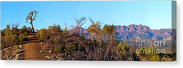 Canvas Print featuring the photograph Bunyeroo Valley by Bill  Robinson