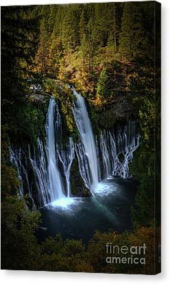 Canvas Print featuring the photograph Burney Falls by Kelly Wade