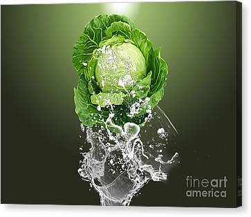 Cabbage Canvas Print - Cabbage Splash by Marvin Blaine