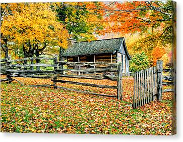 Cabin In The Woods Canvas Print by Darren Fisher