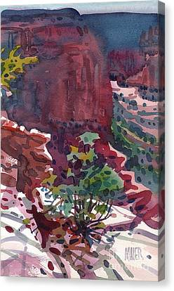 Canyon View Canvas Print by Donald Maier