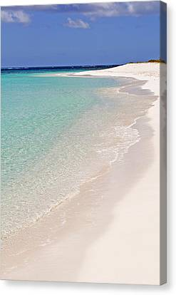 Caribbean Beach. Canvas Print by Fernando Barozza