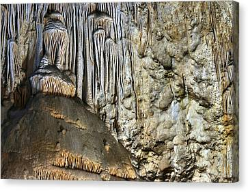 Carlsbad Caverns Detail Canvas Print