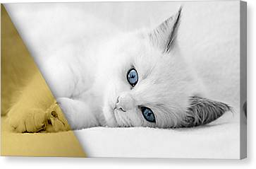 Kitten Canvas Print - Cat Collection by Marvin Blaine