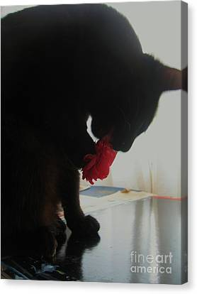 Cat Eating Camellia Canvas Print