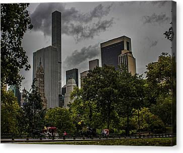 Central Park Canvas Print by Martin Newman