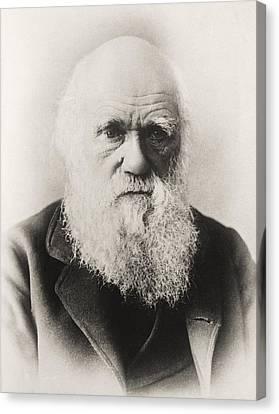 Charles Darwin 1809 1882 English Canvas Print by Vintage Design Pics