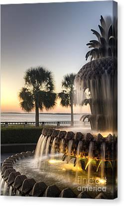 Charleston Pineapple Fountain Sunrise Canvas Print by Dustin K Ryan