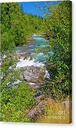 Canvas Print featuring the photograph Cheakamus River by Sharon Talson