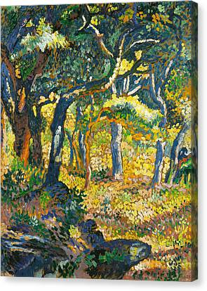 Clearing In Provence  Canvas Print by Henri-Edmond Cross