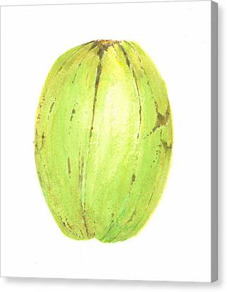 Coconut Canvas Print by Lincoln Seligman