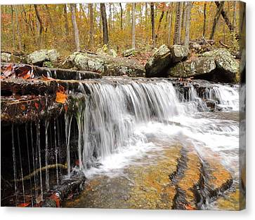 #214 Collins Creek Canvas Print by Delana Epperson