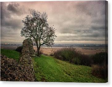 Countryside Canvas Print by Martin Newman