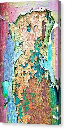 Cracked Paint Canvas Print
