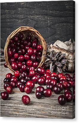 Cranberries In Basket Canvas Print by Elena Elisseeva