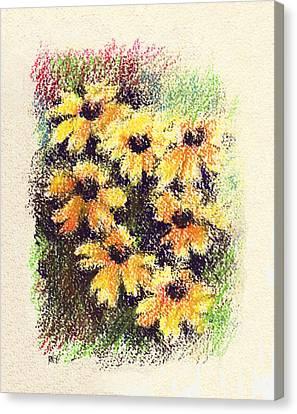 Daisy Canvas Print - Daisies by Rachel Christine Nowicki