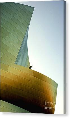 Disney Concert Hall 6 Canvas Print by Micah May