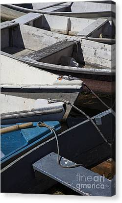 Dories Canvas Print by Timothy Johnson