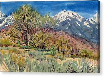 East Of The Sierra Nevadas Canvas Print by Donald Maier