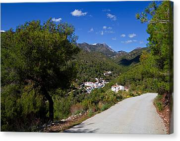 El Acebuchal  The Lost Village Canvas Print by Panoramic Images
