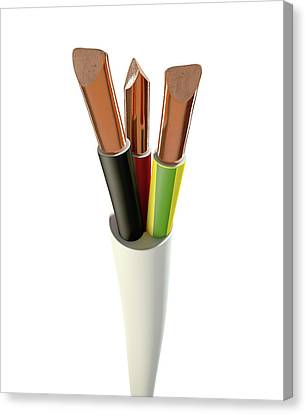 Electrical Cable Canvas Print by Allan Swart