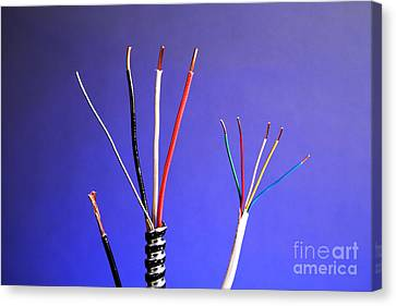 Electrical Cable Canvas Print by Photo Researchers, Inc.