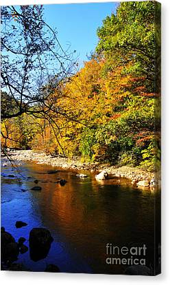 Fall Color Williams River Canvas Print