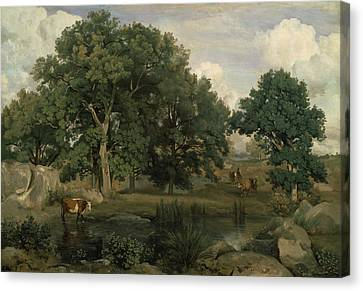 Forest Of Fontainebleau Canvas Print by Jean-Baptiste-Camille Corot